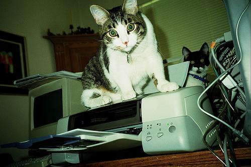 fix printer issues